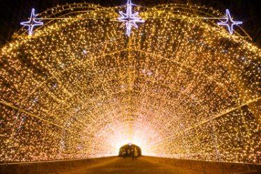 小岩井ウィンターイルミネーション「銀河農場の夜」・2016